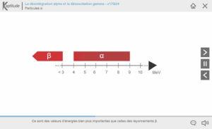 Désintégration α et désexcitation γ