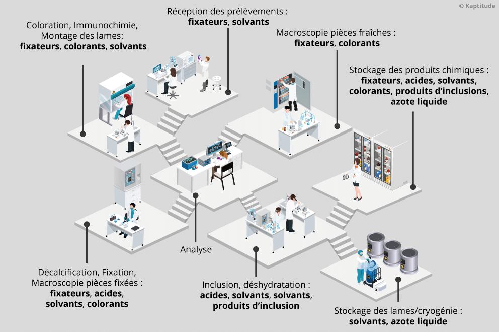 Agents chimiques dangereux manipulés en laboratoire d'anatomie et cytologie pathologiques